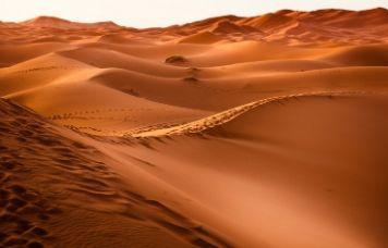 El Sahara podría producir siete veces más electricidad para Europa y todo norte de África