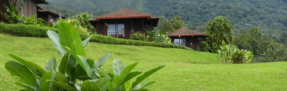 AP-Ingenieria-paises-pequenos-como-costa-rica-hoy-son-ejemplo-de-sostenibilidad-ecologica-para-el-mundo